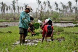 photo credit www.davaoaccountant.com