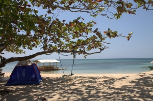 The white sand, the shore, the tree and our tent.